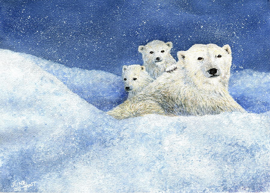 Polar Bear Painting - Dont Mess With Momma by June Hunt