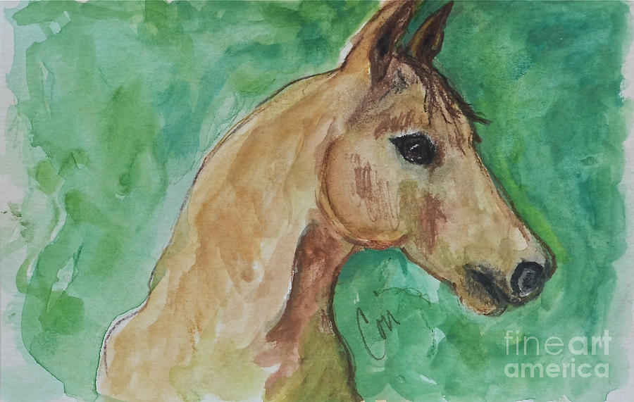 Horse Painting - Doodling Around by Cori Solomon