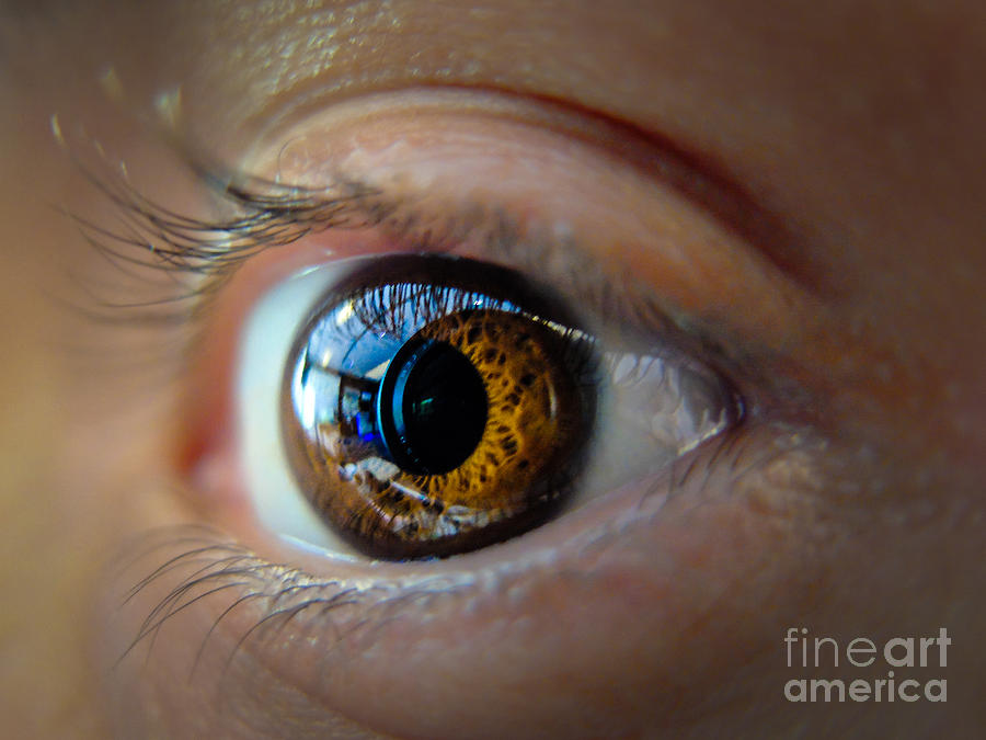 Eyes Photograph - Door To The Soul by Will Cardoso