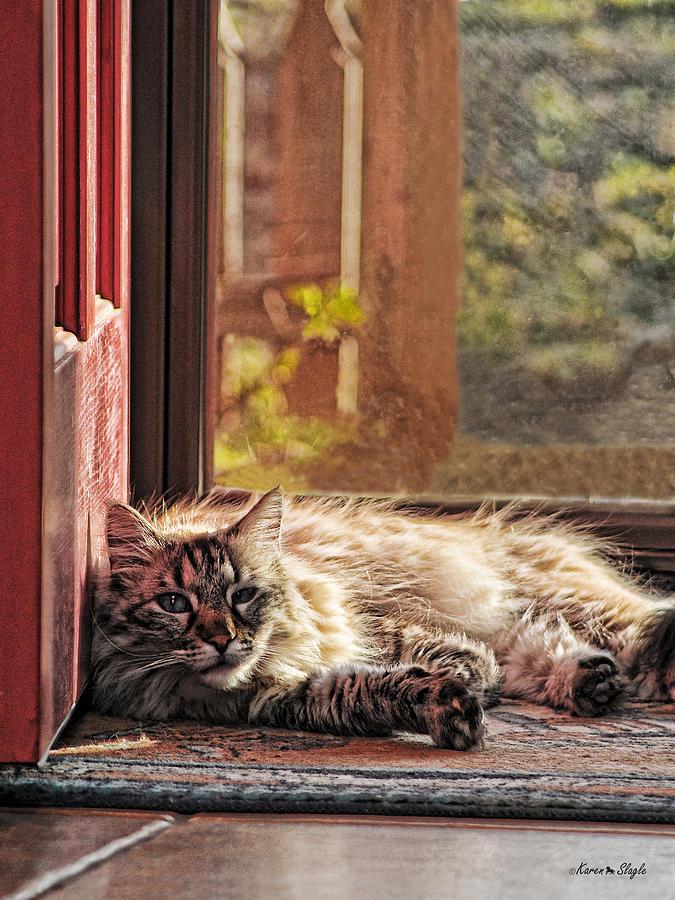Doorstop Photograph - Doorstop by Karen Slagle