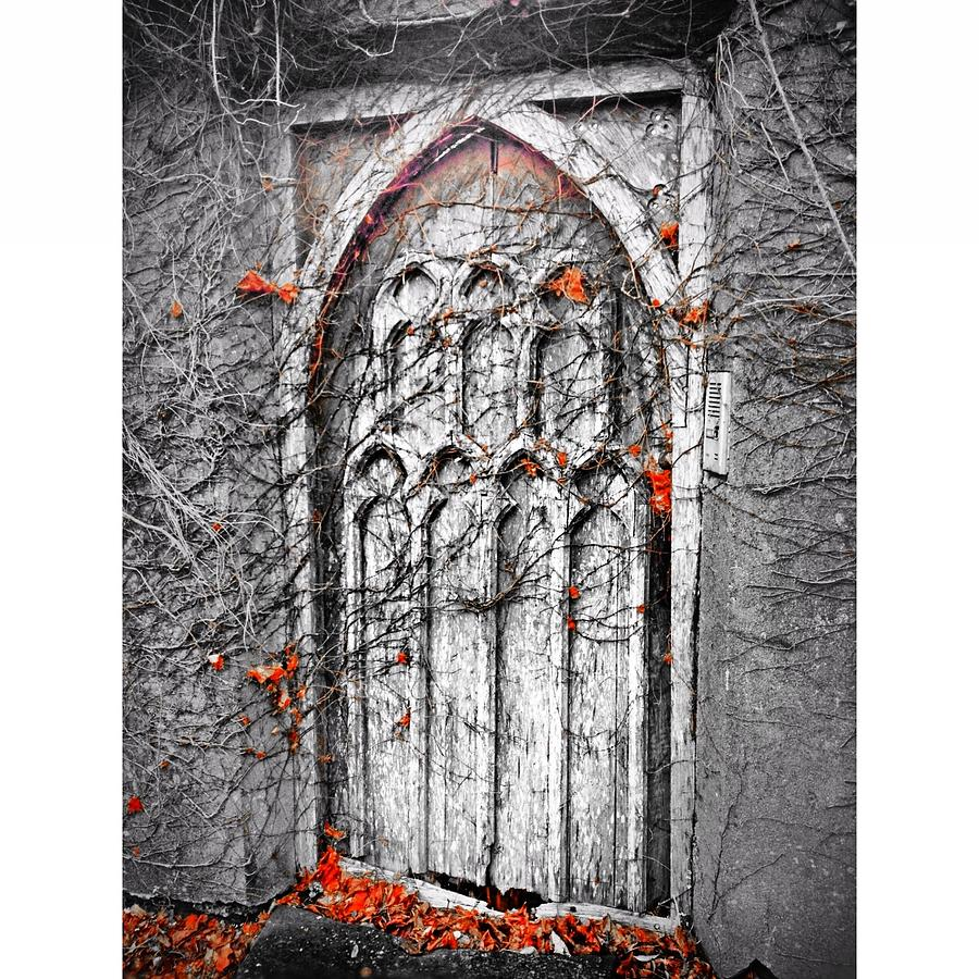 Canvas Prints Photograph - Doorway In Cork by Maeve O Connell