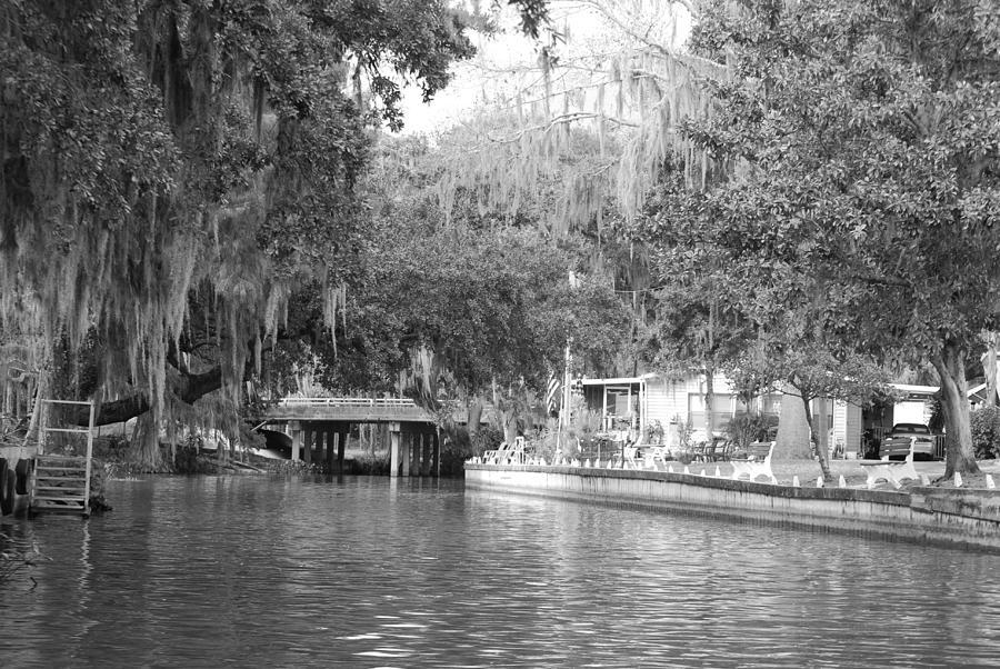 Dora Canal Photograph - Dora Canal by Cyndi Lenz