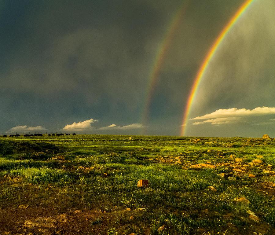 Buffalo Photograph - Double Rainbow by Craig Brown