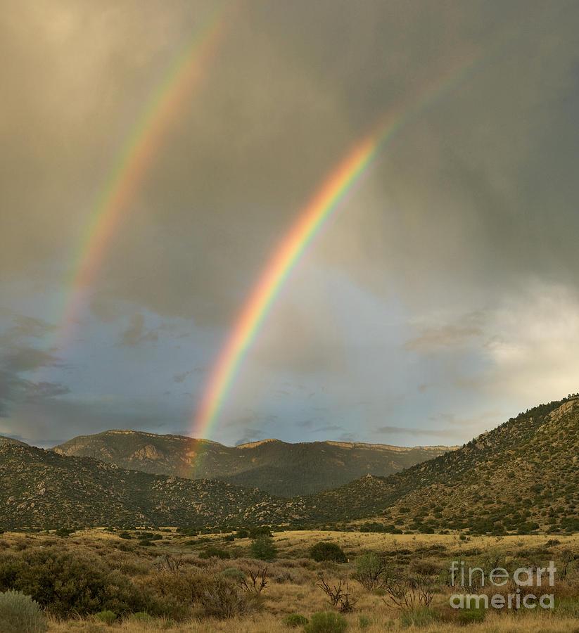 Sandia Photograph - Double Rainbow In Desert by Matt Tilghman