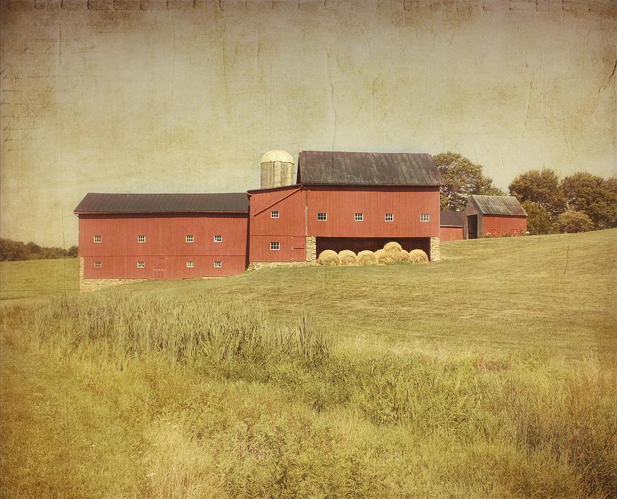Farm Photograph - Down On The Farm by Kim Hojnacki