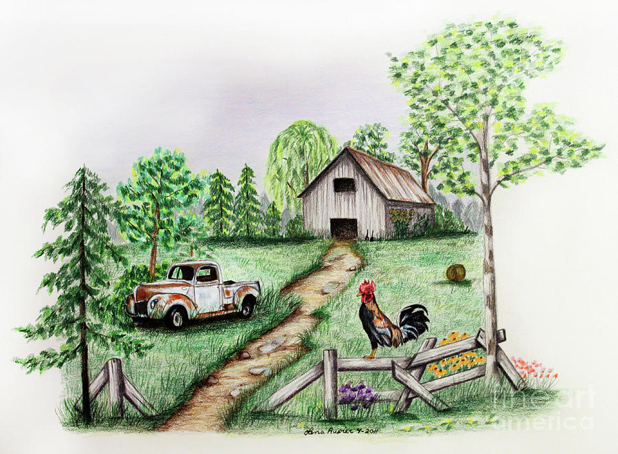 Farm Drawing - Down On The Farm by Lena Auxier