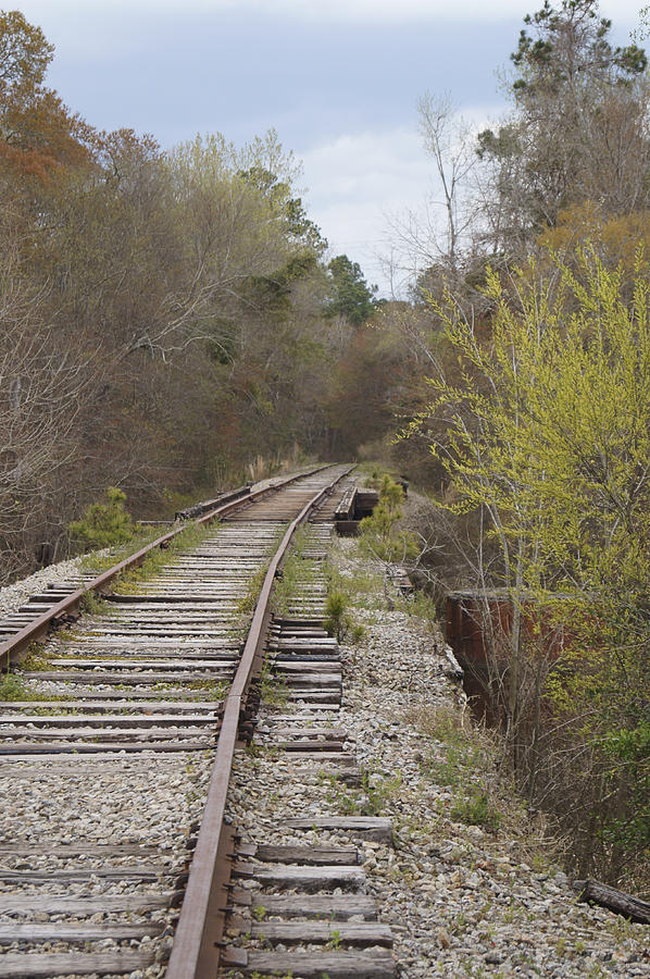 Railroad Photograph - Down The Line by MM Anderson