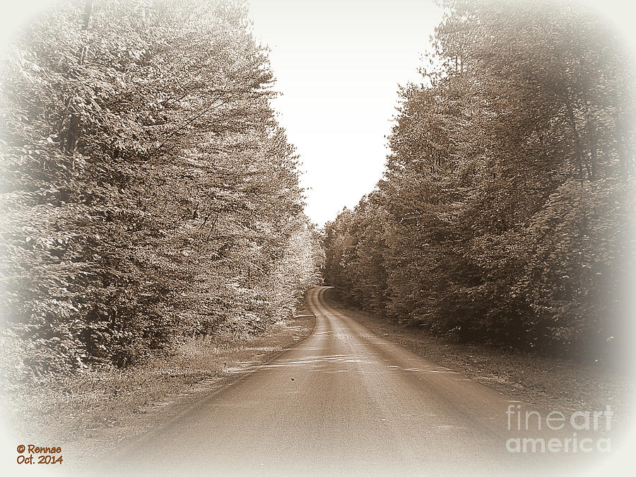 Landscape Photograph - Down The Road by Rennae Christman