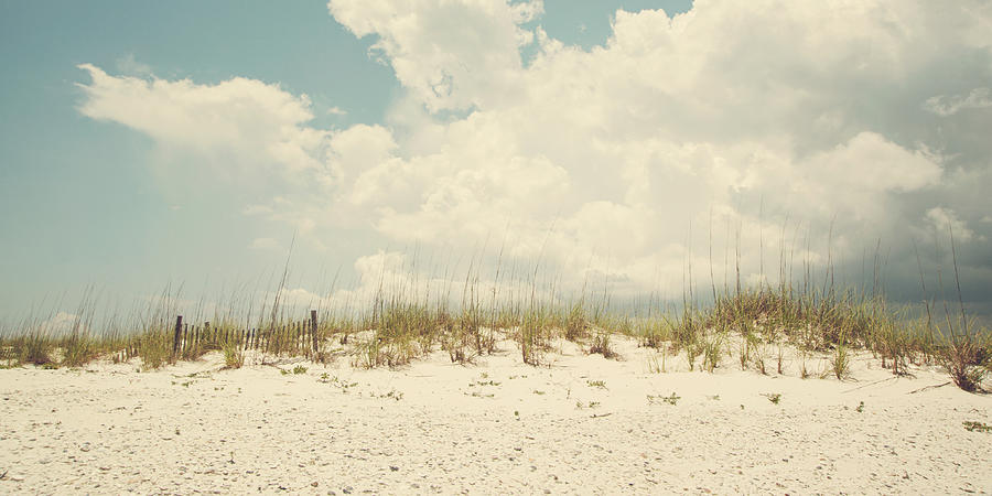 Alabama Photograph - Down The Shore by Kate Livingston