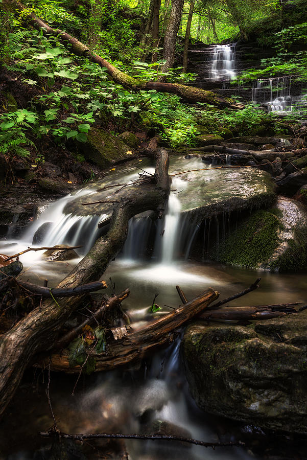 Office Decor Photograph - Downstream by Mark Papke
