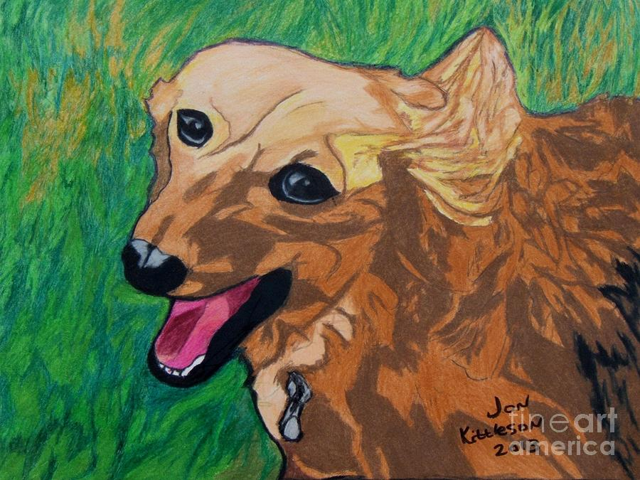 Dog Drawing - Doxie by Jon Kittleson