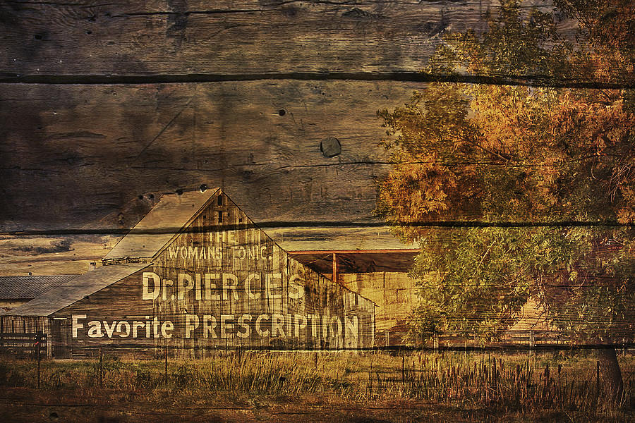 Barn Photograph - Dr. Pierces Barn by Priscilla Burgers