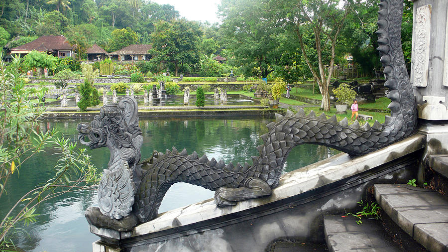 Bali Photograph - Dragon by pool by Jack Edson Adams