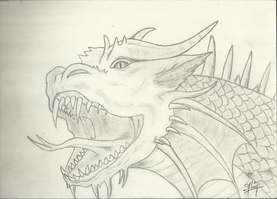Dragon Drawing - Dragon Sketch by Saleem Baig