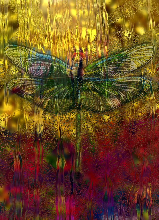 Photo Painting - Dragonfly - Rainy Day  by Jack Zulli