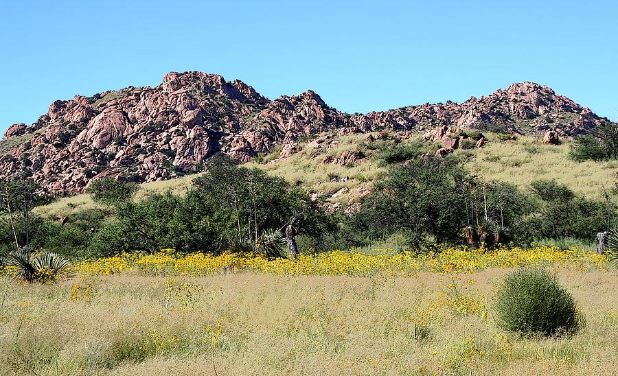 Arizona Photograph - Dragoon Mountains by Joe Kozlowski