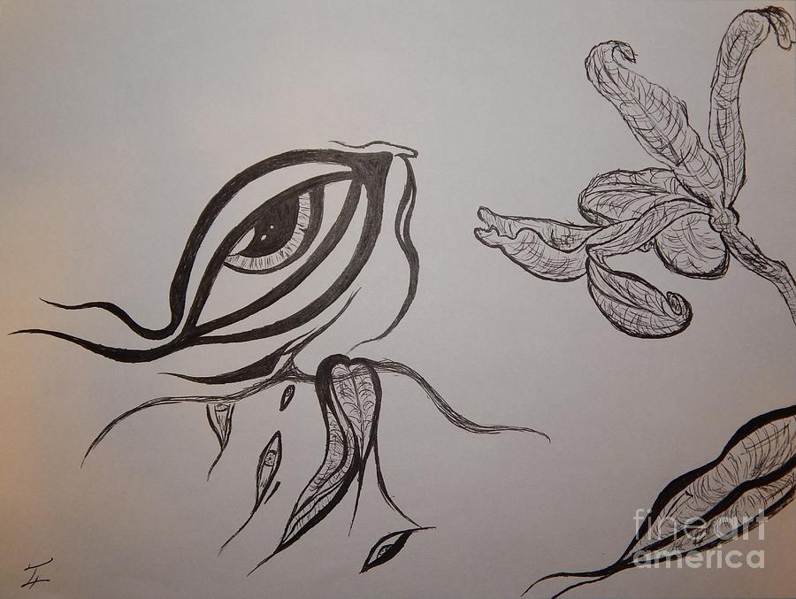 Drained Drawing - Drained By The Bloom by Thommy McCorkle