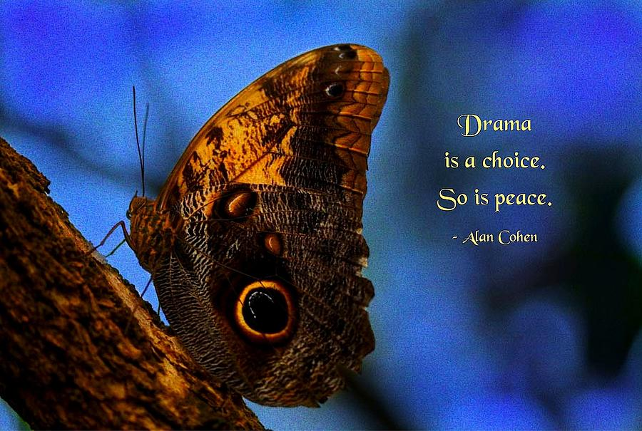 Quotation Photograph - Drama Is A Choice by Mike Flynn