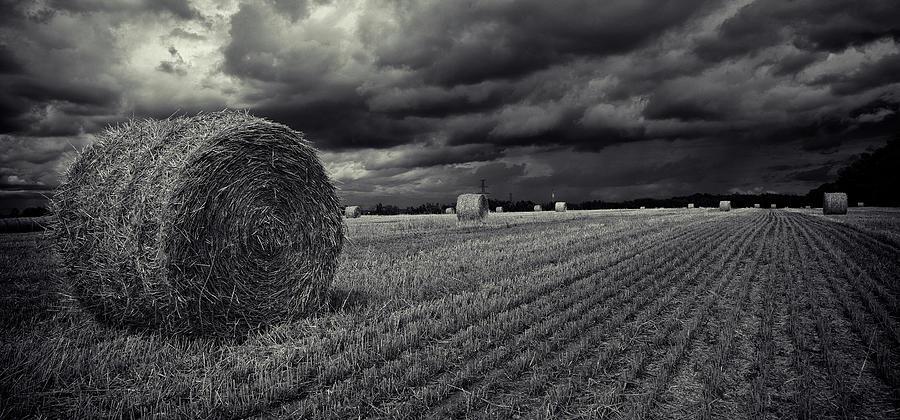 Dramatic Presentation Of A Field Around Photograph by Roland Shainidze Photogaphy