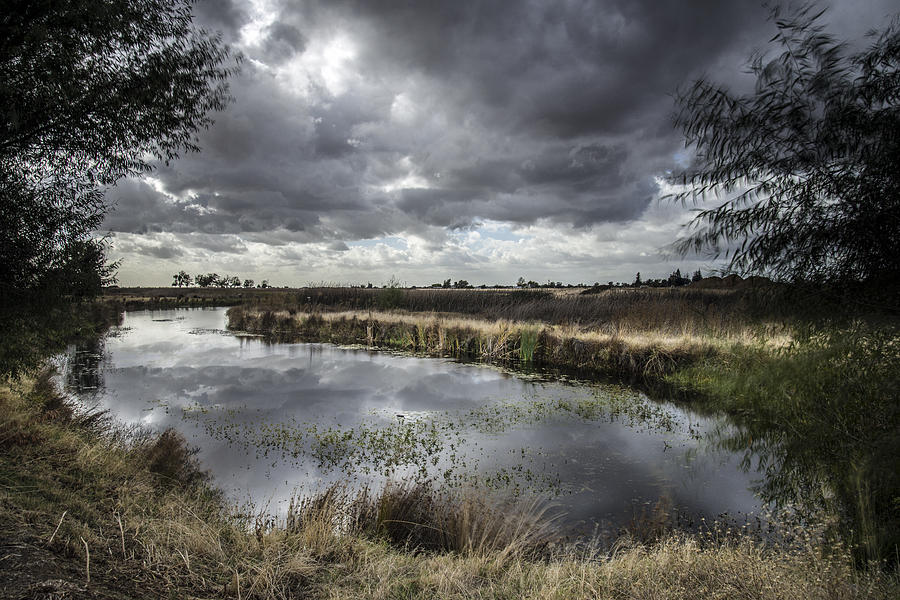 Landscape Swamp Nature Water Refection Green Sun Drama Cloud Clouds Storm Long Exposure Nikond810 Afternoon  Photograph - Dramatic Swamp... by Israel Marino