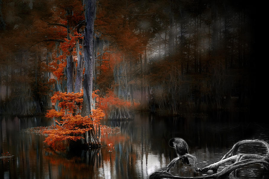 Lake Photograph - Dramaticlake2 by Cecil Fuselier
