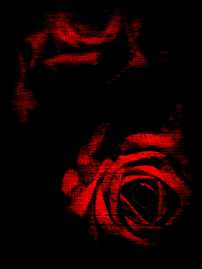 Red Rose Photograph - Dread Roses by Susan Maxwell Schmidt