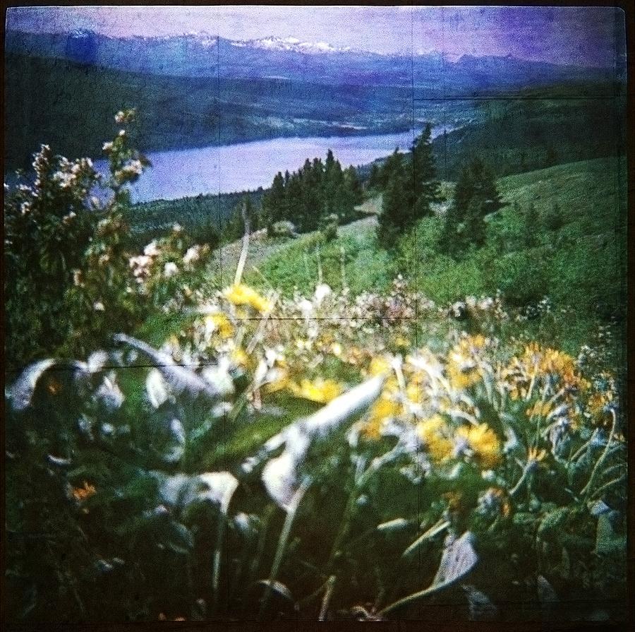 Dream In East Glacier by Carol Whaley Addassi
