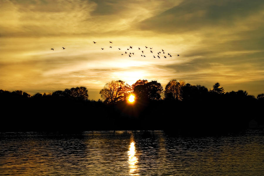 Fall Photograph - Dream Of A Sunset by Mary Lane