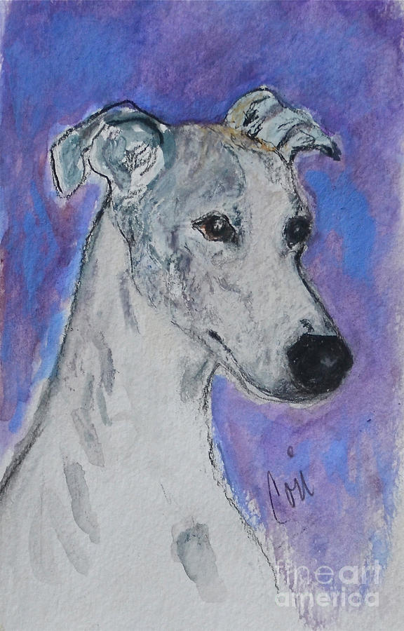 Whippet Painting - Dream Weaver by Cori Solomon
