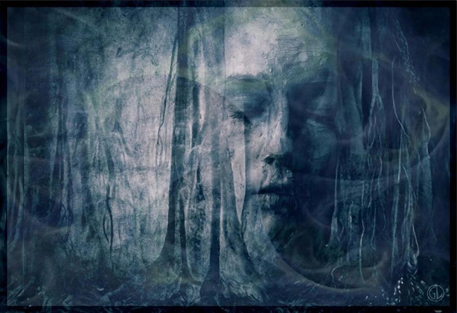 Nature Digital Art - Dreamforest by Gun Legler