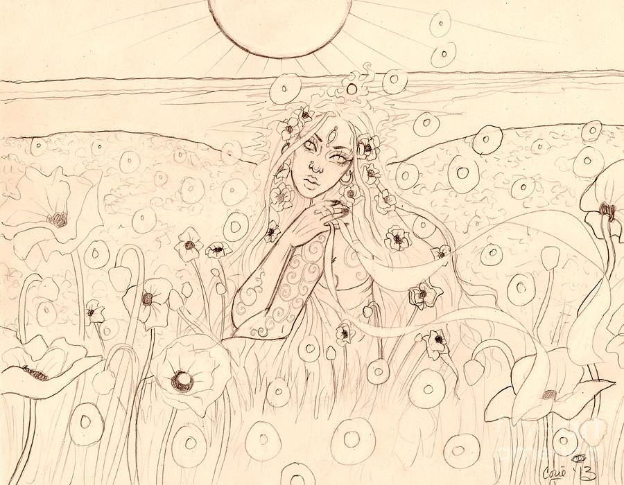 Greek Drawing - Poppy Dreams Sketch by Coriander  Shea
