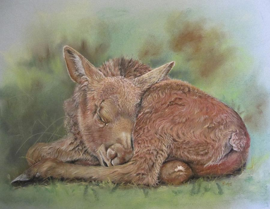 Moose Pastel - Dreaming by Turea Grice
