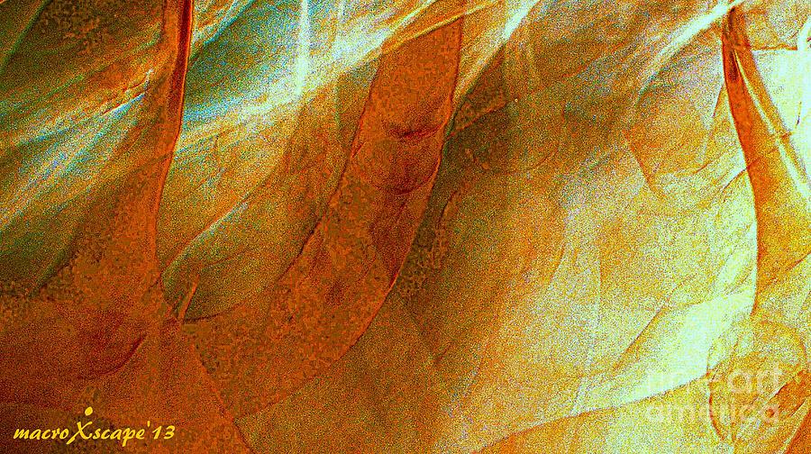 Dreamscape Digital Art by JCYoung MacroXscape