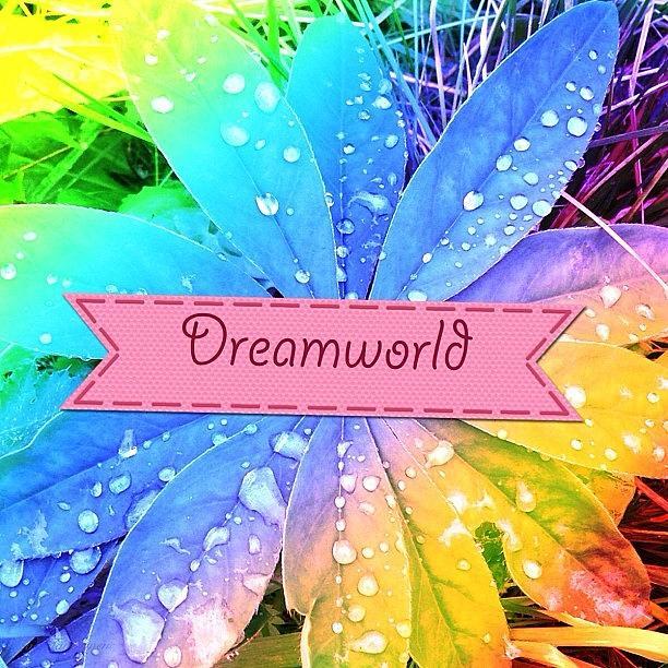 Beautiful Photograph - Dreamworld. #photo #photos #pic #pics by Eve Tamminen