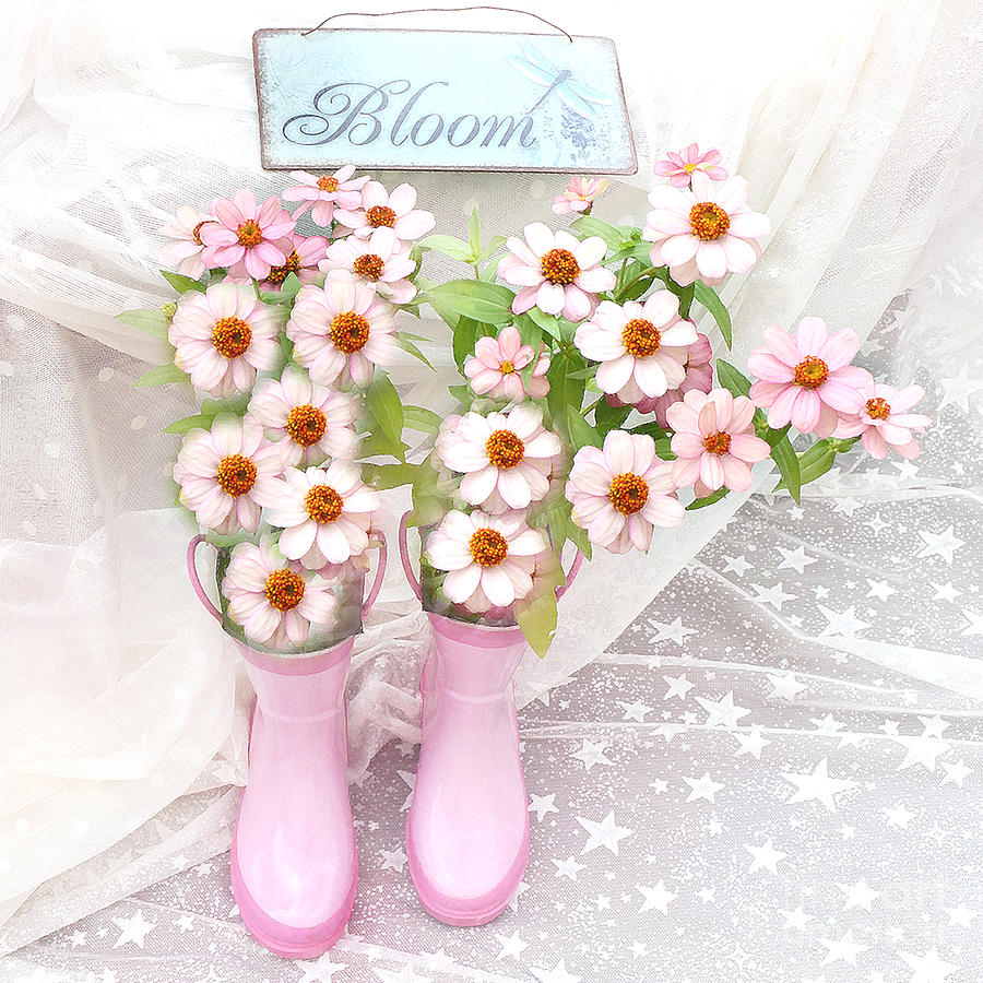 Dreamy Cottage Garden Art - Shabby Chic Pink Flowers Garden Bloom With Pink Rain Boots Photograph by Kathy Fornal