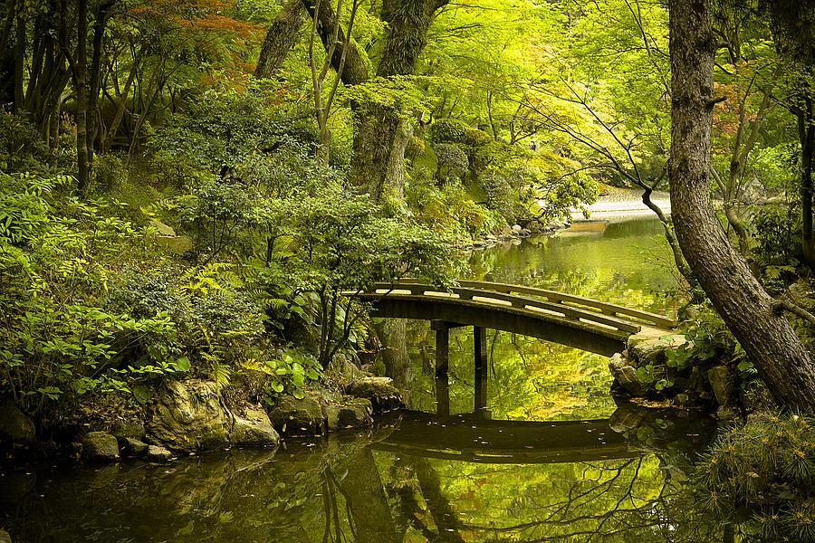 Japan Photograph - Dreamy Japanese Garden by Sebastian Musial