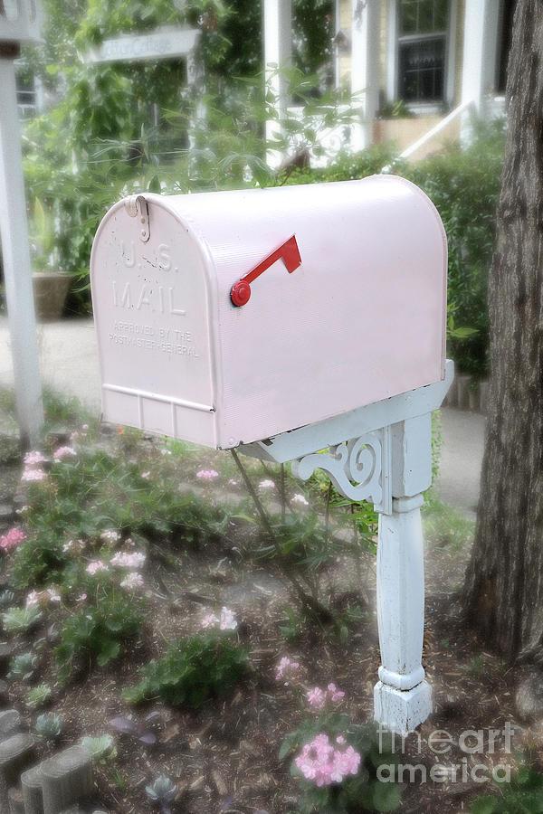 Dreamy Pink Mailbox Shabby Chic Cottage Chic Garden Pink