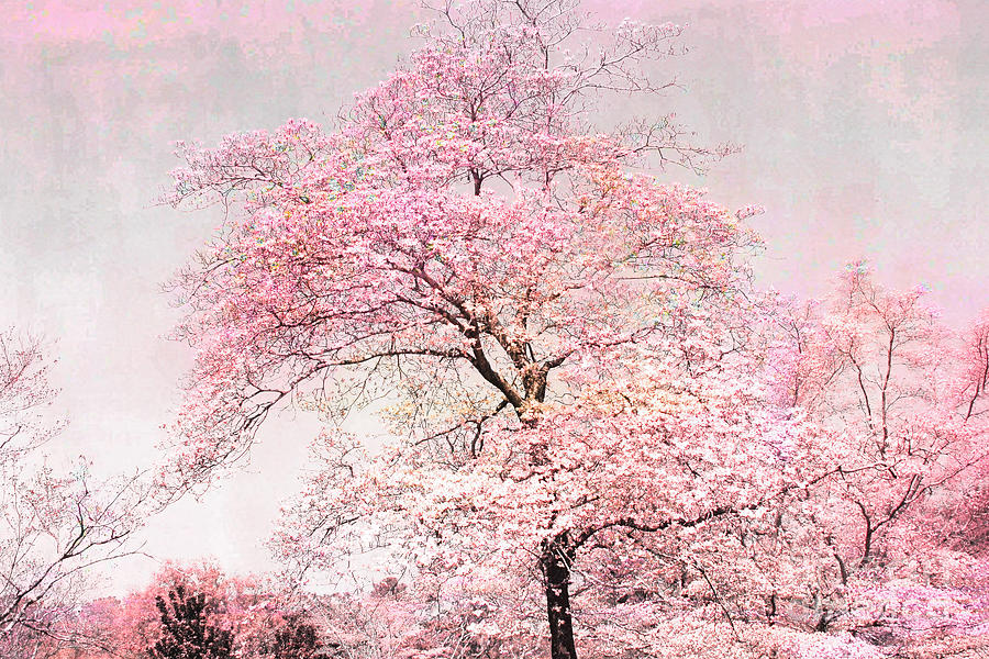 Dreamy Pink Pastel Cottage Shabby Chic Nature Tree