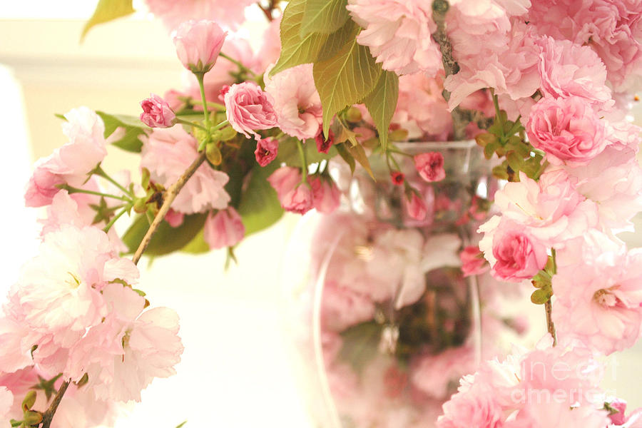 Dreamy Shabby Chic Cottage Pink Cherry Blossoms Flowers In Vase