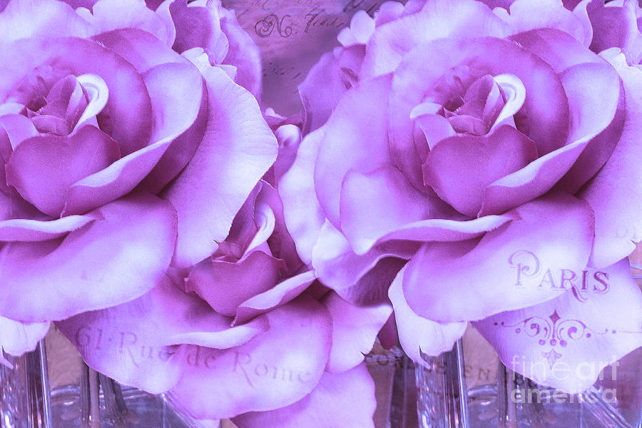 Purple Roses Photograph - Dreamy Shabby Chic Purple Lavender Paris Roses - Dreamy Lavender Roses Cottage Floral Art by Kathy Fornal