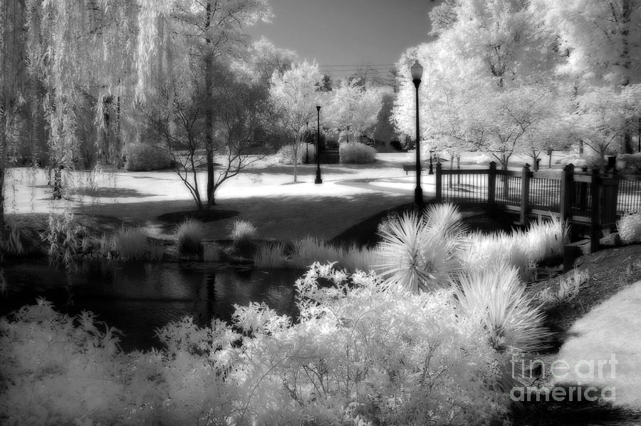 Dreamy Surreal Black White Infrared Landscape Photograph by Kathy Fornal