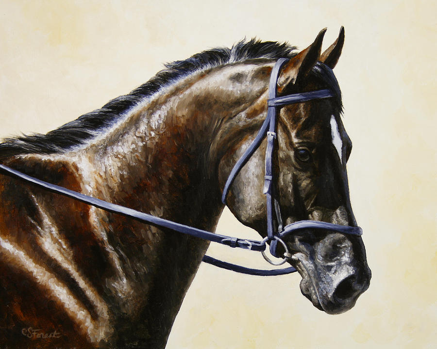 Horse Painting - Dressage Horse - Concentration by Crista Forest