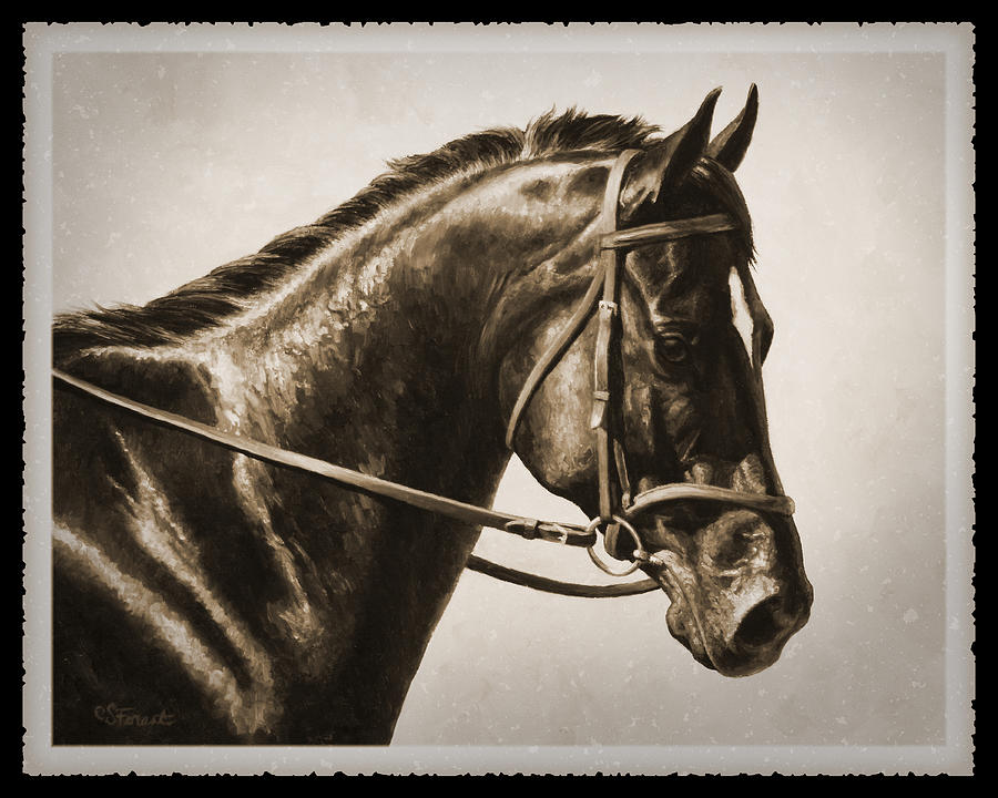 Horse Painting - Dressage Horse Old Photo FX by Crista Forest