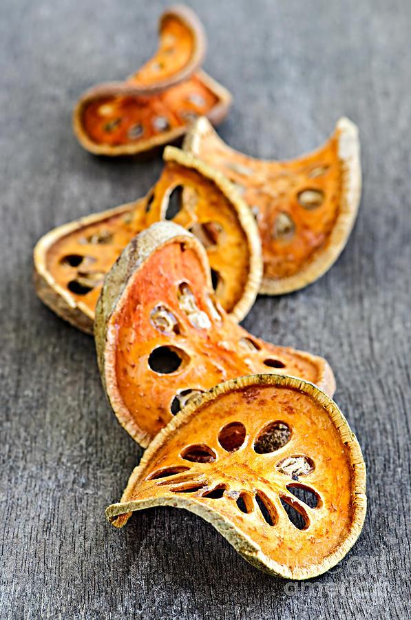 Bael Photograph - Dried Bael Fruit by Elena Elisseeva