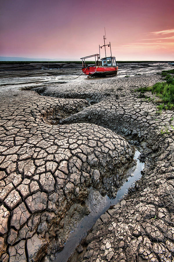 Dried Cracked Mud Photograph by Paul Bullen