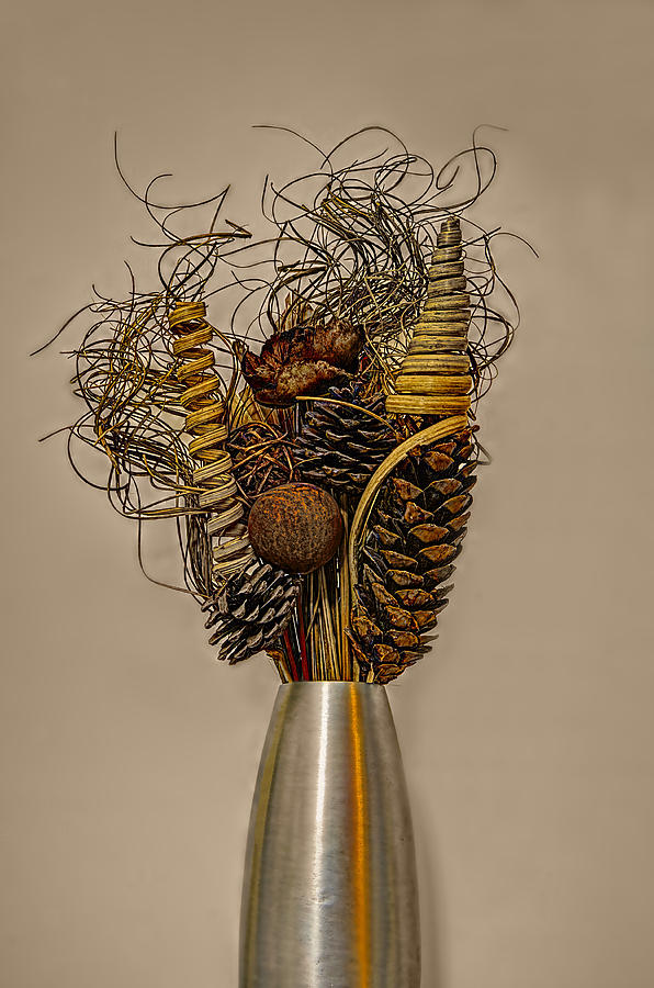 Reed Photograph - Dried Flowers by Nick Field