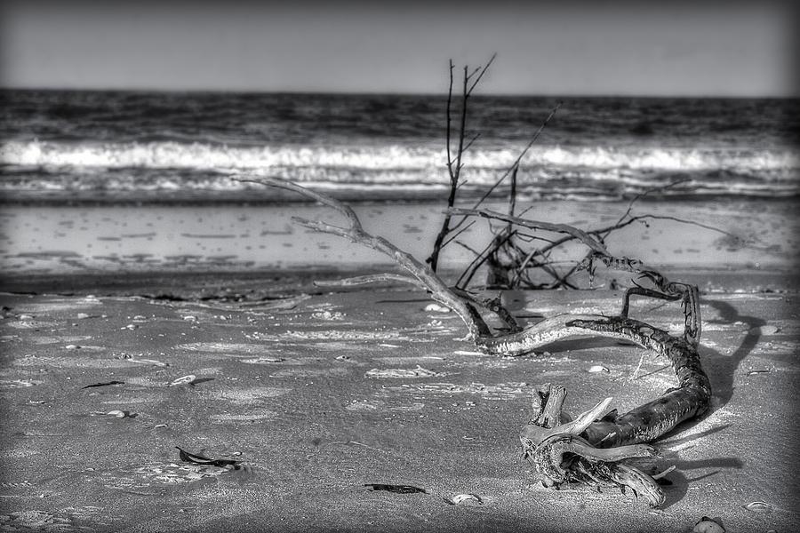 Drift Away Photograph