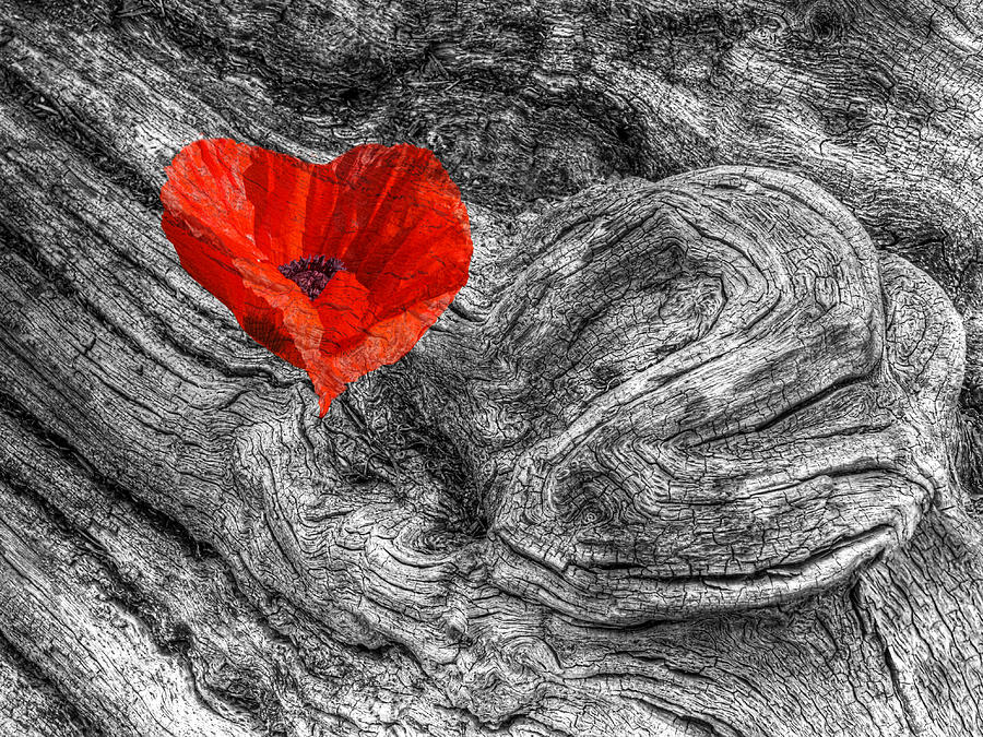 Red Heart Photograph - Drifting - Love Merging by Gill Billington