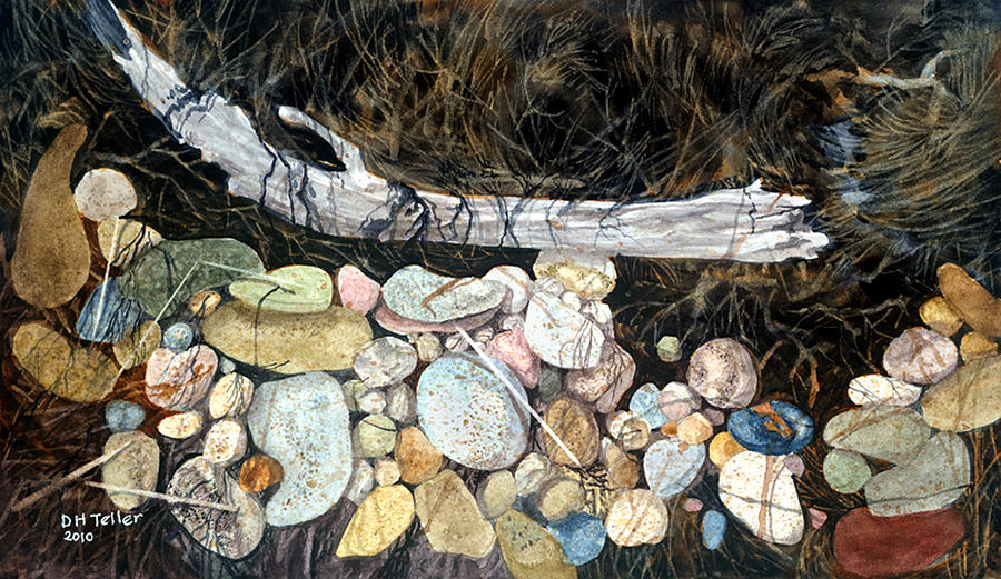 Driftwood and Pebbles by Douglas Teller
