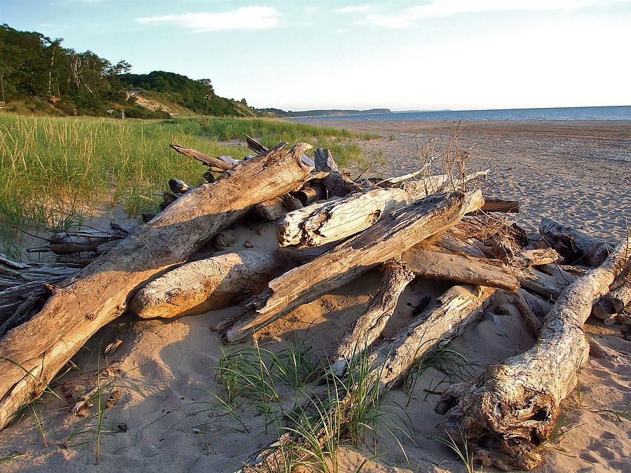 Piled Photograph - Driftwood At Sunset by Susan Wyman